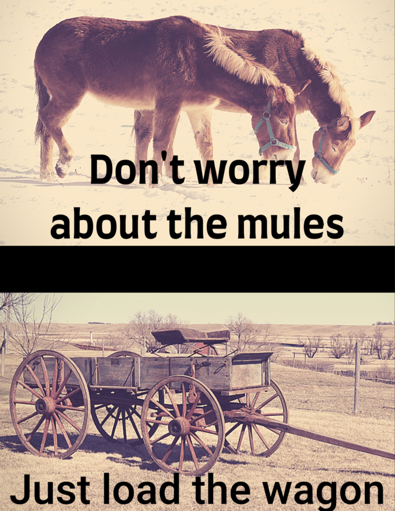 Don't worry about the mules...Just load the wagon